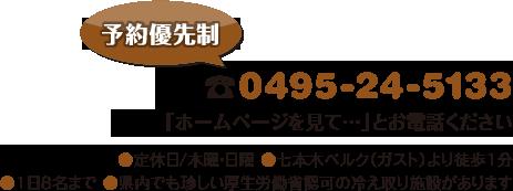 電話:0495-24-5133